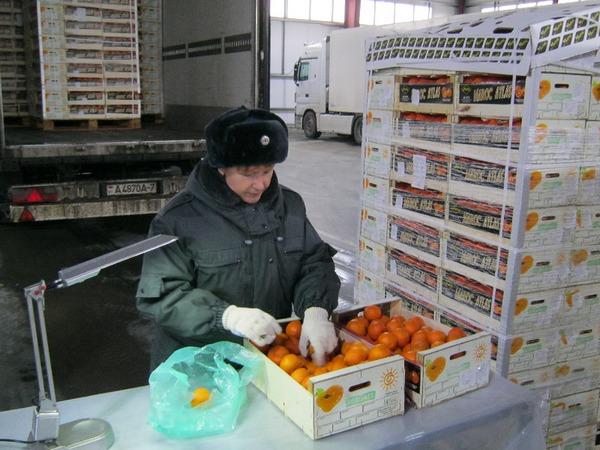 Торговали сомнительными мандаринами