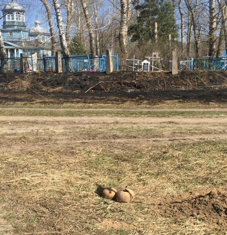 В Золотухинском районе обнаружили человеческие останки