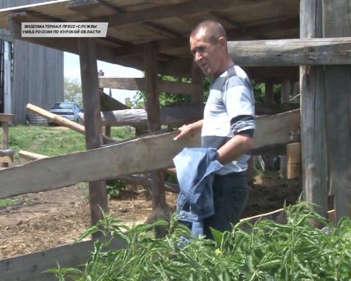 В Рыльском районе задержан счастливый обладатель двух телят