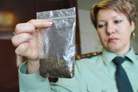 В Курске продолжается отлов наркоманов