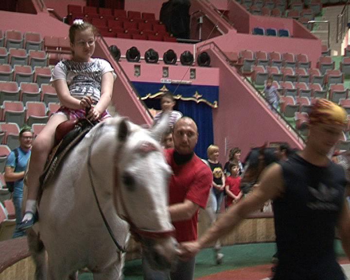 В курском цирке проходят сеансы анималотерапии