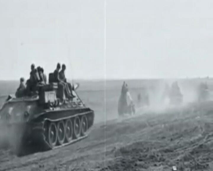 Что куряне знают о Курской битве?
