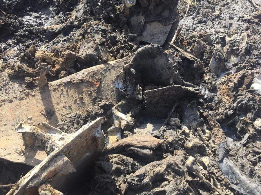Под Курском были найдены останки разбившегося бомбардировщика времен ВОВ