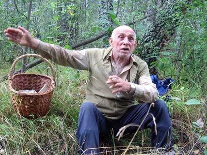 Куряне травятся грибами. Как не получить отравление?