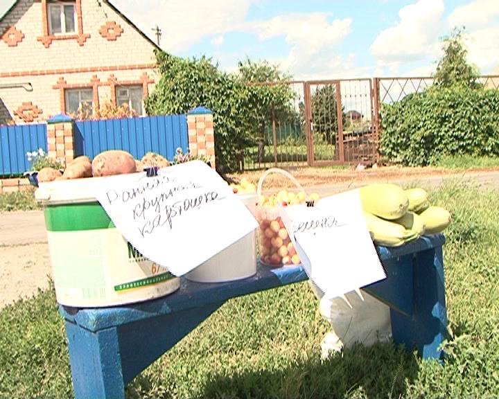 В Курском регионе стартовал сезон уличной торговли
