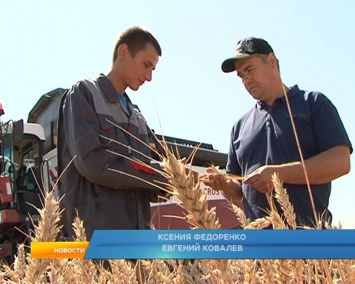 В  Конышевском районе собрались представители крупнейших компаний сельскохозяйственной отрасли региона.