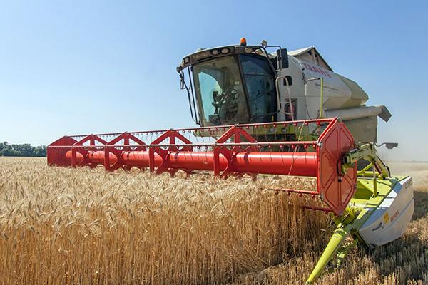 Курские аграрии убрали 11% площадей