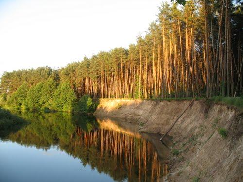 В Курской области ребёнок утонул на воде