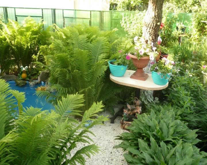 В Курске выбрали лучших садоводов