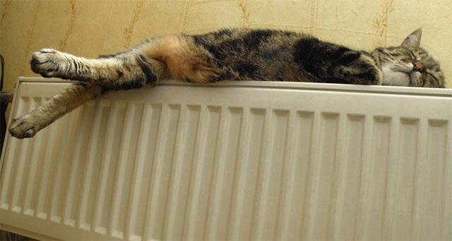 Осталось немного: в Курске начнут включать отопление