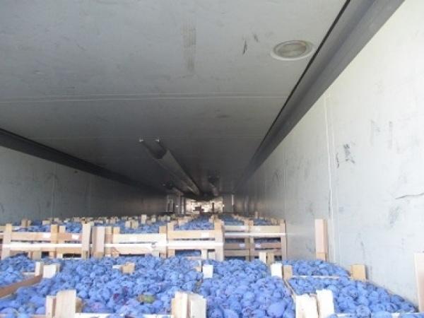 На границе с Курской областью задержали 19 тонн слив