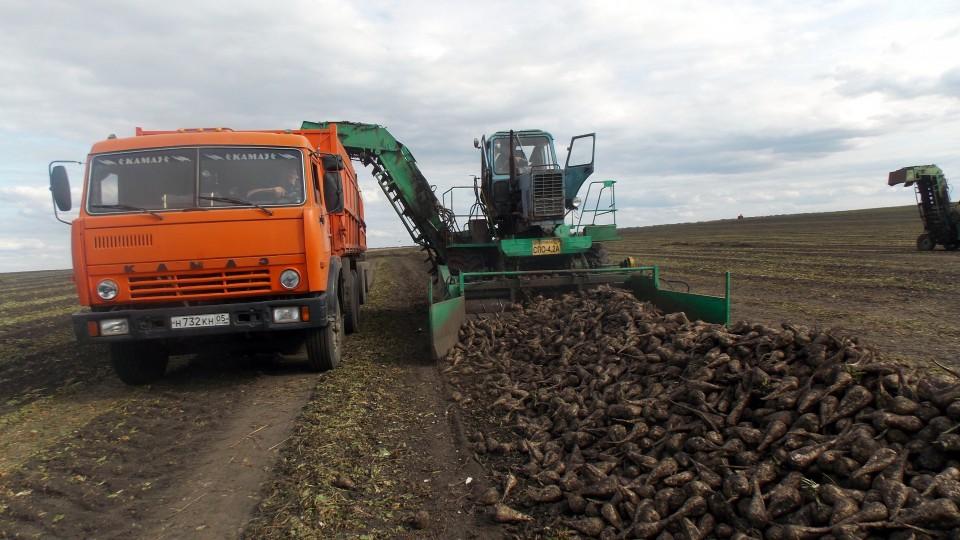 В Курской области завершается уборочная кампания