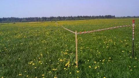 В Курской области за 7 лет бесплатные земельные участки получили 2428 семей