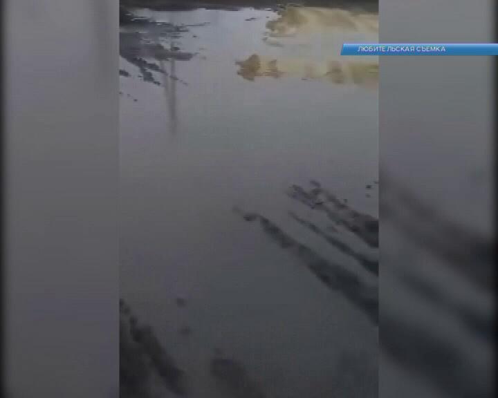 В Курской области 700 населенных пунктов без дорог