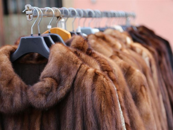 В Курской области продавцов меховых изделий оштрафовали на 120 тыс.руб.